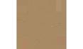 《DOTA2》NIP战队介绍