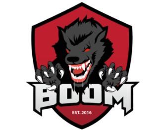 《DOTA2》BOOM ID战队介绍
