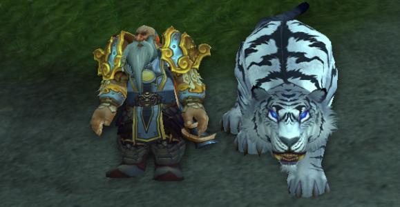 《魔兽世界》怀旧服猎人常用宏整理
