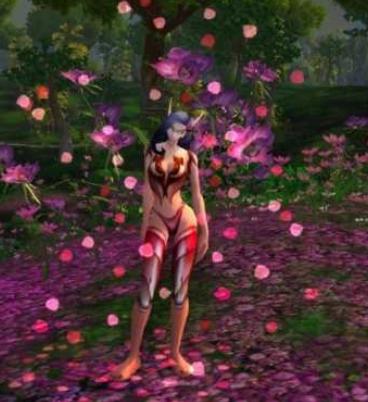 《魔兽世界》怀旧服一堆玫瑰花瓣介绍