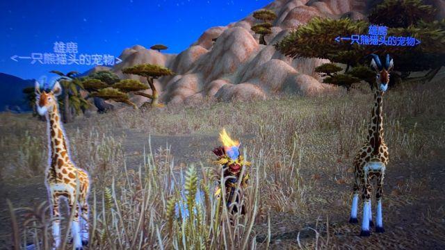 《魔兽世界》長颈鹿宠物位置