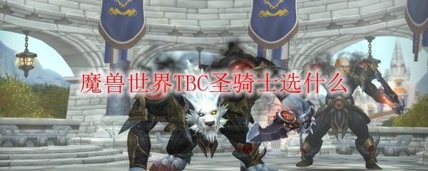 魔兽世界TBC圣骑士选什么