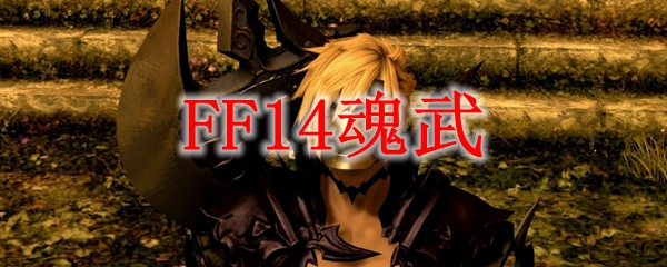 FF14魂武