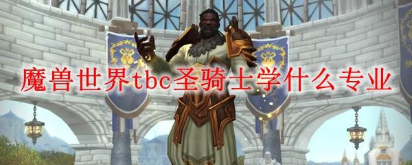魔兽世界tbc圣骑士学什么专业