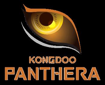 统一品牌!韩国OC队伍Kongdoo Panthera正式更名为Griffin