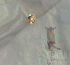 魔兽世界铂银矿石哪里刷_wow怀旧服铂银矿石分布位置介绍